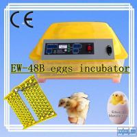 Newest EW-48 High Quality Automatic Humidity Chicken Incubator / Mini Egg Incubator With 12v-220v Power
