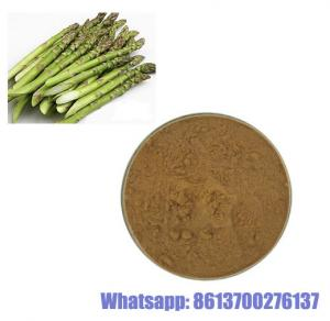 China Herbal Extract Powder Asparagus Cochinchinensis on sale