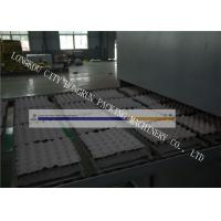 High Output Paper Egg Crate Making Machine With CE / ISO9001 Certificate