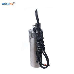 China Whaleflo 100m 720LPH small solar electric submersible water pump for irrigation on sale