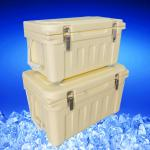 20L Plastic Insulated Ice Chest in Blue