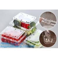 Blister Packaging Food Container,Disposable Blister Fruit Salad Container,Plastic blister fruit box / container / fruit