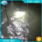 Luz profesional de los pescados, luz del señuelo de la pesca del LED, luz de los pescados del LED, 90W luz verde blanca, luz ámbar, Blu-ray