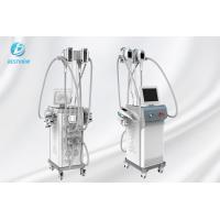 China Fat Reducing Cryolipolysis Slimming Machine  / Cryolipolysis At Home Machine on sale