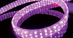 China LED Rope Light,Silica Gel, PVC, LED MOTIF, LED Wedding Light, decorative light,Single Color and Multi-Color on sale