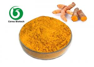 China Water Extraction Natural Turmeric Curcumin Extract 95%  Orange Yellow Powder on sale