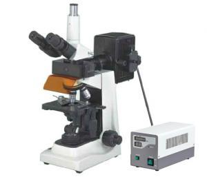 China Trinocular Epi Fluorescence Microscope/Fluorescent microscopy on sale