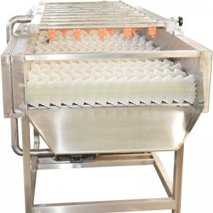 China Stainless Steel 220v Jujube Fruit Vegetable Washing Machine on sale
