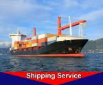 International Sea Freight Door To Door Service Shenzhen To New York