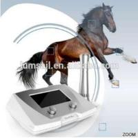 equine veterinary shock wave therapy equipment/ equine shockwave machine