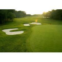 High Wear Resistance Artificial Golf Turf 20 mm Height Field Green Color