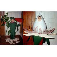 leaf cartoon costume for adult