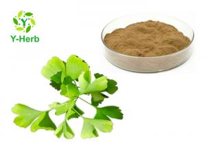 China Dried Ginkgo Biloba Leaf Extract Powder Water Soluble Flavones 24% Lactones 6% on sale
