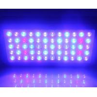 China Full Spectrum Led Aquarium Lights 60x3w Epistar Leds , Led Aquarium Lamp on sale
