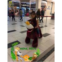China Hansel  amusement game bull riding toys for kids safari animal motorcycle ride on sale
