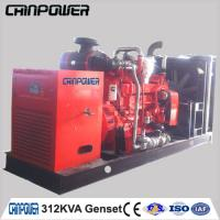 China 250kw open type / silent type gas generator powered by  cummins engine with leroy somer alternator on sale