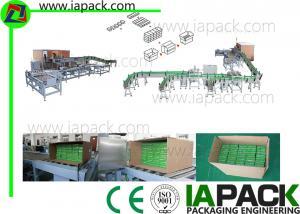 China Горизонтальная машина для упаковки коробки, автоматическая Cartoning машина on sale