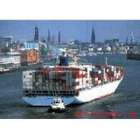 cargo service/container shipping agent in tianjin/dalian
