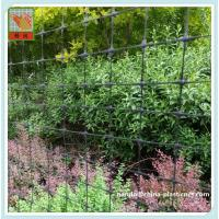 Plastic Netting / Garden Fencing, Better quality and price, Mesh size: 50mm*50mm, High tensile strength and lightweight