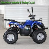 China 110cc 125cc Kids Automatic ATV with CE certificate on sale