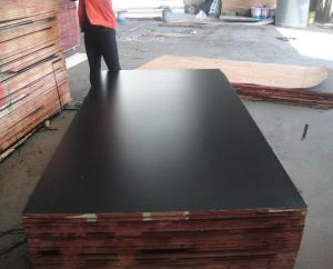 China 1220*2440, 1250*2500mm, 1500*3000mm MARINE PLYWOOD & film faced shuttering plywood prices on sale
