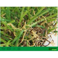 China Nature Garden Artificial Grass 35mm Uv Resistant with High Color Fastness on sale