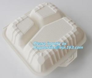 China Food Serving Compartment Tray, Food Meat Packaging Tray, eco friendly vegetable tray on sale