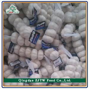 China China Fresh Pure White Garlic on sale
