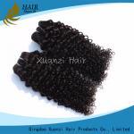 長続きがする巻き毛の緩い波のバージンの人間の毛髪延長7A 100%のバージンの毛