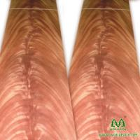 China High quality fancy Mahogany Crotch veneer for furniture plywood and door face on sale