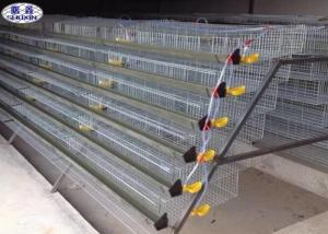 China Galvanized Metal Quail Laying Cage , 6 Layers Wire Quail Laying Cages on sale