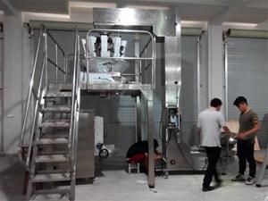 China Salt powder packaging machine doypack filling machine,packing filling machine Cookies nut packaging machine on sale