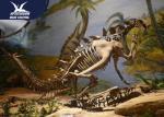 Museum Exhibition Dinosaur Fossil Replicas Realistic Bone / Dinosaur Skeleton Model