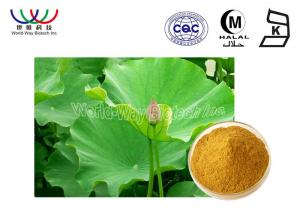 China Health Care Lotus Herbal Products , Organic Herbal Extracts Powder Food Grade on sale