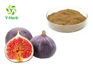 China Leaf Or Dried Fig Fruit Extract Powder  High Purity Brown Fine Natural Supplement on sale