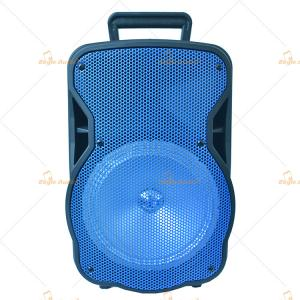 China Professional Disco Light Bluetooth Trolley Speaker , 15 Inch Stage Active PA Speaker on sale
