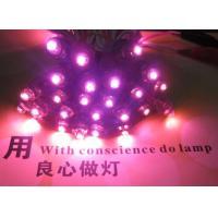 China 9mm IP68 pink LED Pixel string module light DC 5V for channel letter sign diodos advertisment signage on sale