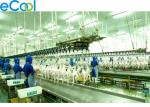 1000 Tons Productivity Integrated Meat Processing Cold Room For Poultry