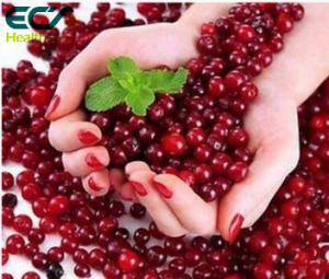 China Beauty Effect Cranberry Extract Powder , Natural Fruit Extract Powder For Obesity supplier