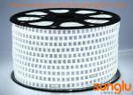 Cool White Waterproof LED Rope Lights Double Lines AC220V For Shopping Mall