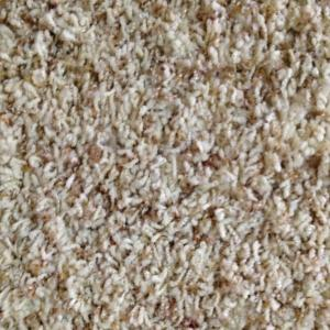 Quality Living Room Rubber Backed Cut Pile Carpet Rug 25mm Height For Sale