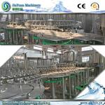 Rotary Filling Machine For Pure Mineral Water Filling