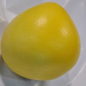 China Grade A Golden Honey Grapefruit Good For Lungs / Throat / Blood Circulation on sale