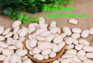 China White kidney bean WHITE KIDNEY BEAN Chinese supplier High quality cindy@xtlandi.com on sale