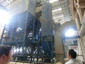 China Biomass Energy Power Plant on sale