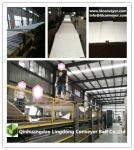 Conveyor belt woven polyester belt PVC belt for carton machine