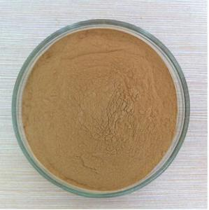 China rosemary extract,rosemary extract powder,rosemary leaf extract,rosmarinic acid on sale