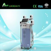 Beijing LEADBEAUTY cryolipolysis cellulite reduce machine on sale