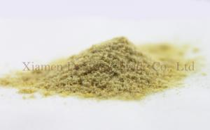 China Natural Fruit Powder 100 Mesh Freeze Dried Mango Bulk Food 12 Months Shelf Life on sale