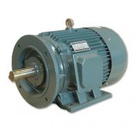China Motorcycle three phase Super High Efficiency AC DC Electric Motor on sale